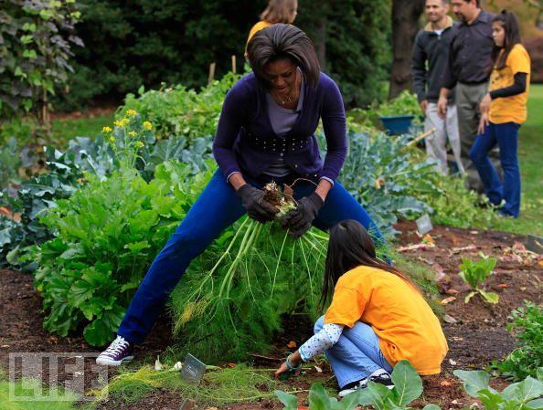 Gardening with Michelle
