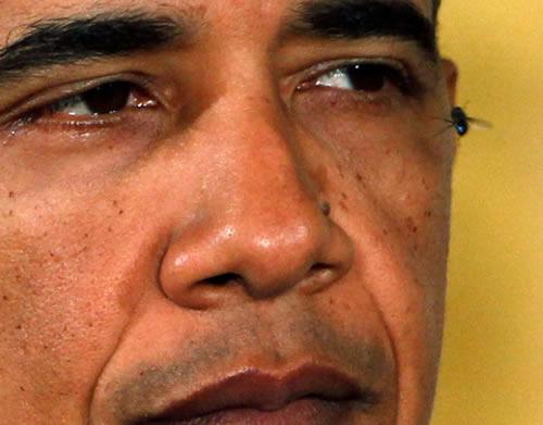 Barack Obama the Human Flytrap